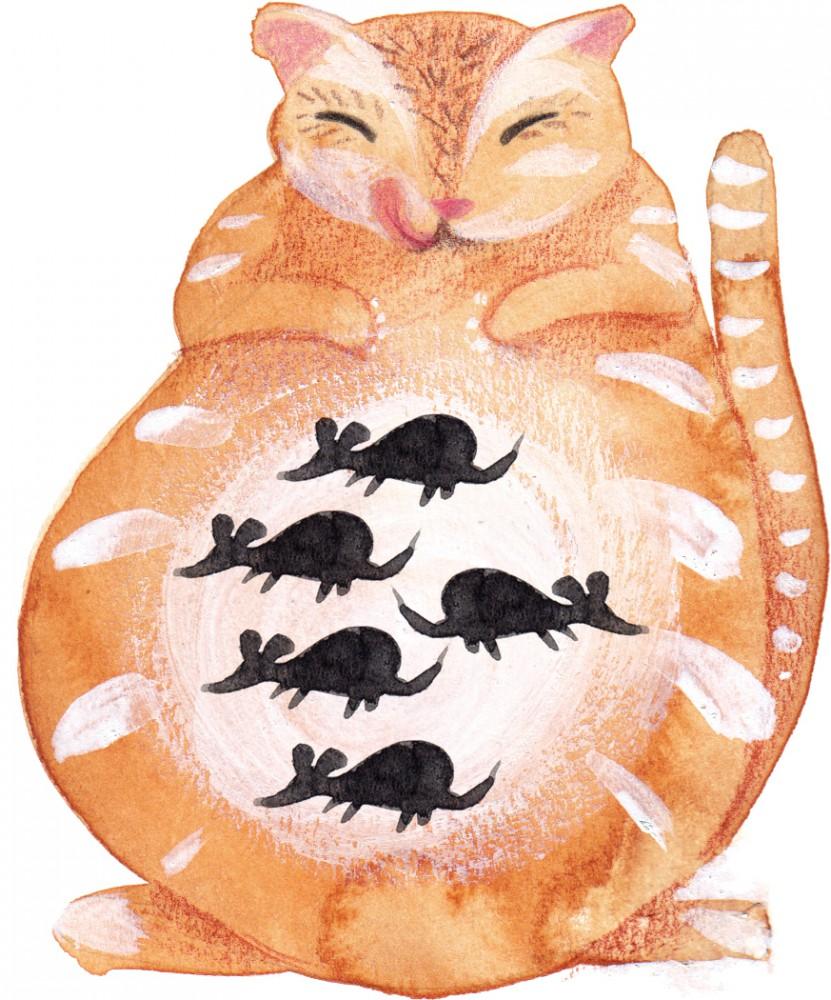 Tocamates en la radio los gatos hambrientos tocamates - Como cazar ratones ...