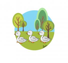 Los patos en fila