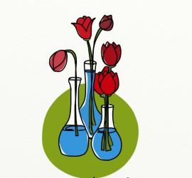 cinco tulipanes puestos en tres jarrones ¿dónde pongo el sexto?