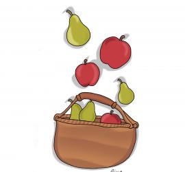 Las peras y las manzanas, las del cesto y las que tomas